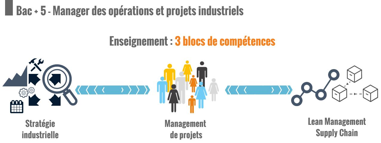 IPI, BAC + 5 Manager des opérations, programme